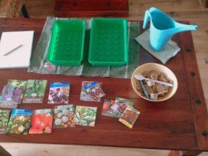 Auf einem Tisch liegen Saatgut, Minigartenhäuser und Zubehör für Aussaaten bereit.