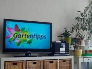 TV-Gerät, auf der eine Gartensendung läuft