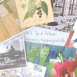 """Yes — I volunteer!"" 40 engagierte Postkartengeschichten aus aller Welt"